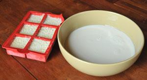 Ferments lactiques pour fromage frais blanc